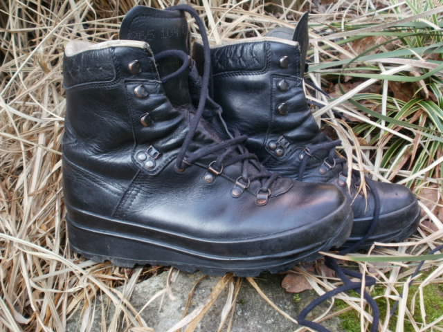 German Mountain Boots? P1310018