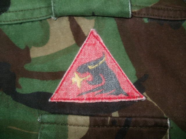 P 68 Combat Jacket.....Need help to ID the patch please!!!! P2230015