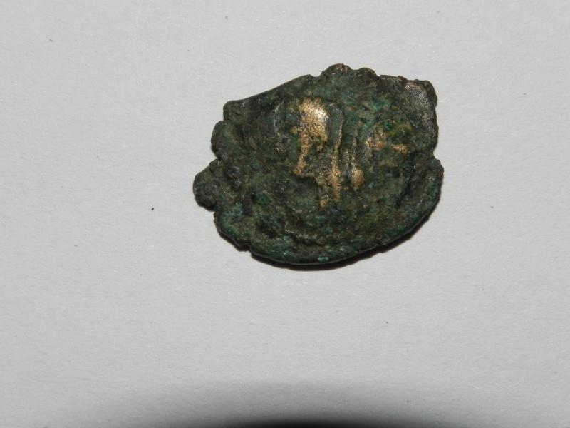 Véliocasses (région du Vexin normand) Dscn1812