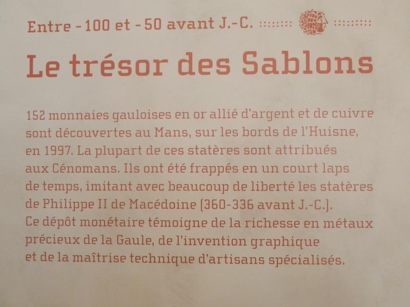 Le trésor gaulois des Sablons Dscn2710