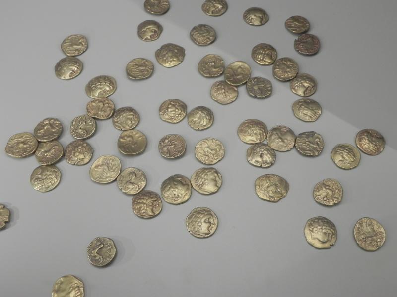 Le trésor gaulois des Sablons Dscn2711