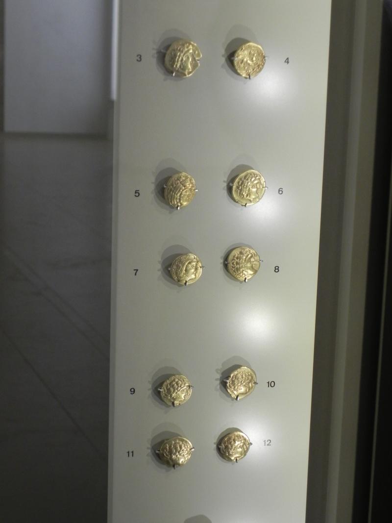 Le trésor gaulois des Sablons Dscn2712