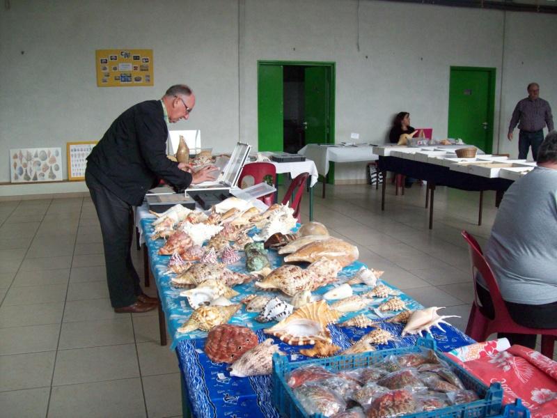 2014 Bourse de Berry au Bac / Reims - 1 & 2 novembre 100_4811