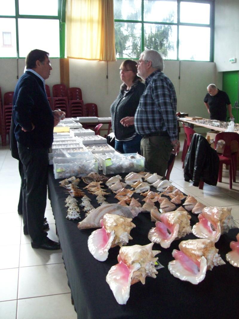 2014 Bourse de Berry au Bac / Reims - 1 & 2 novembre 100_4815