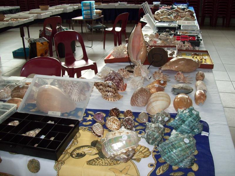 2014 Bourse de Berry au Bac / Reims - 1 & 2 novembre 100_4816