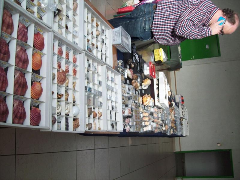 2014 Bourse de Berry au Bac / Reims - 1 & 2 novembre 100_4822