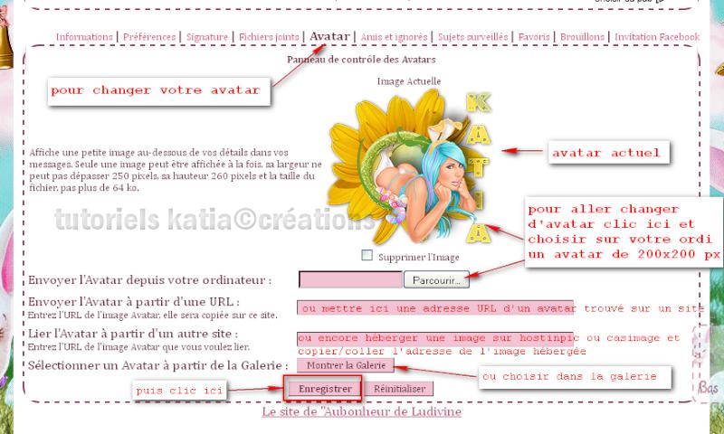 Comment édité votre profil sur le forum Editer17