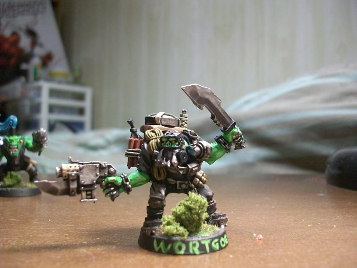 Im back,With Orks 100_8518