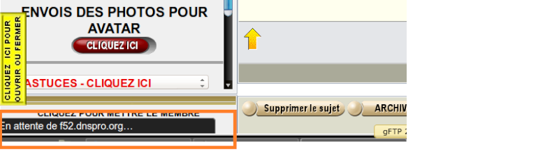 Probleme d'affichage photos/smileys + forum qui rame Captur22