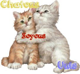 ► Challenge 2.0 Chaton10