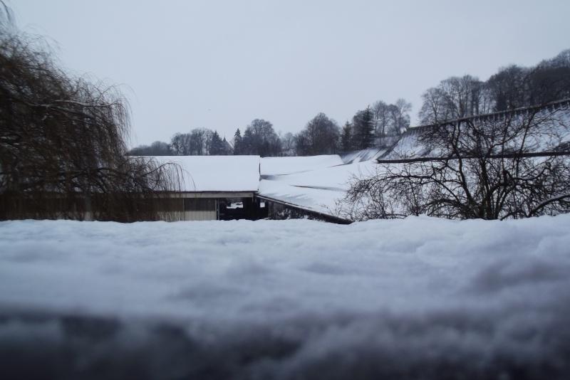 la neige est-elle arrivée chez vous ?  - Page 19 Neiges12