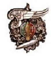 1er Régiment Etranger de Parachutistes 311