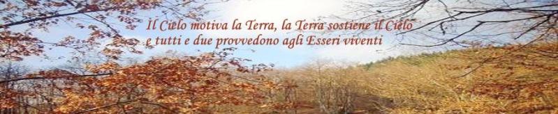 TRA CIELO E TERRA forum