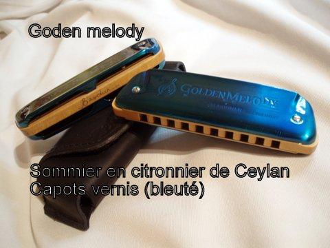 Photos harmonicas Brodur - Page 6 84718310