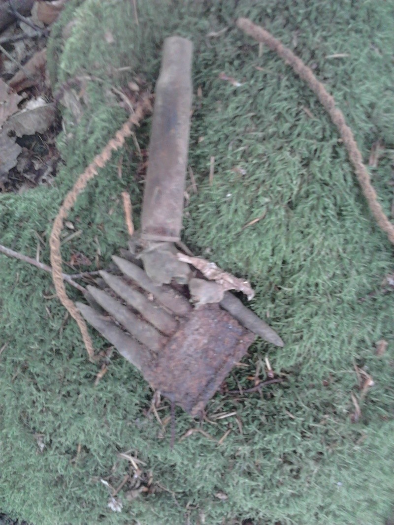 fouilles de ce week end dans foret Photo311