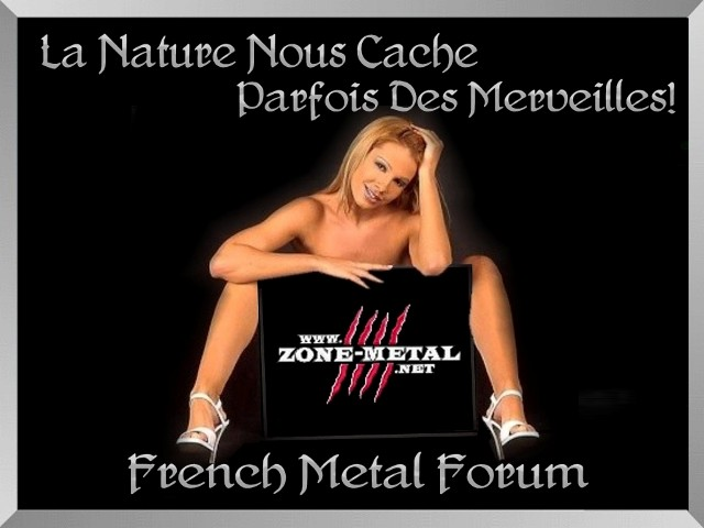 GALERIE  ZONE METAL  - Page 11 Zm-17210