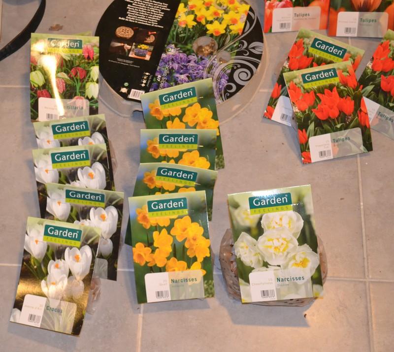 Parterre rocaille bulbes diverses fleurissant de février à octobre. 00310