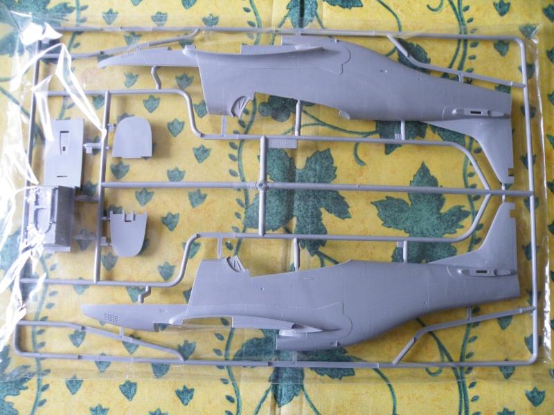 P 51D Mustang IV Trumpeter 1/24 P-51d_15