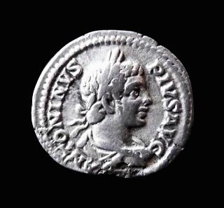 As de Vespasien ..  et avis photos par extension ...  P1100812
