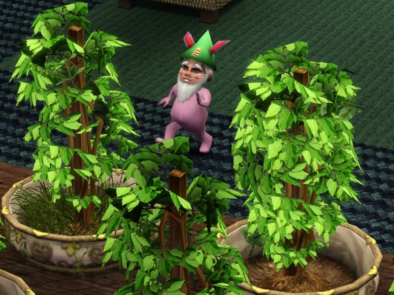 Gnomes : Love 'em or Hate 'em : Share here - Page 3 Screen10