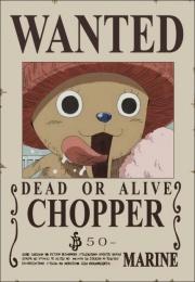 [Teufelsfrucht Nutzer] Tony Chopper 180px-10