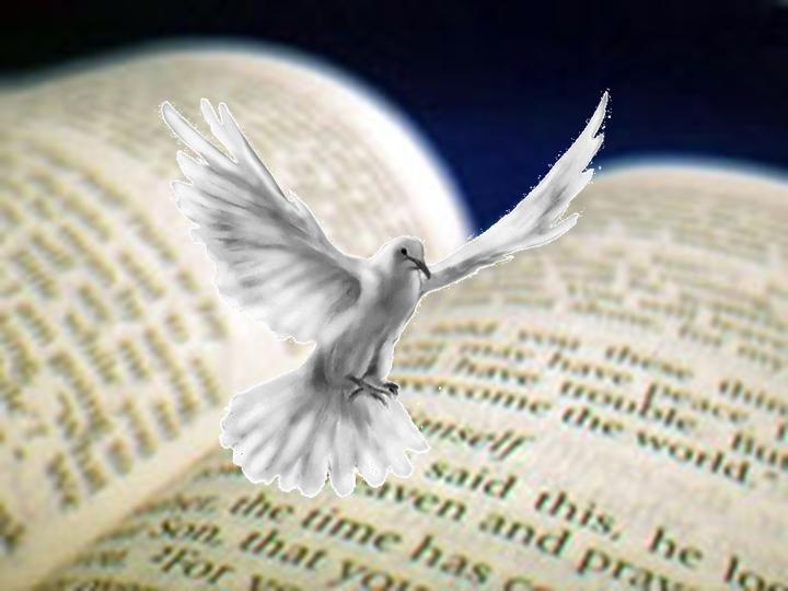 Evangile du jour : du 08/02/2010 Bibles10