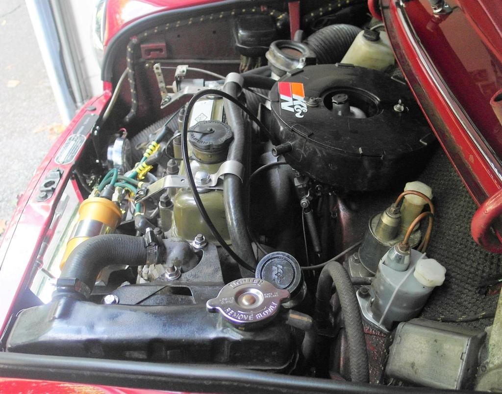 Rover Cooper 91 et Leyland 1100 77 et Riley Elf 67 - Page 9 Sam_3510