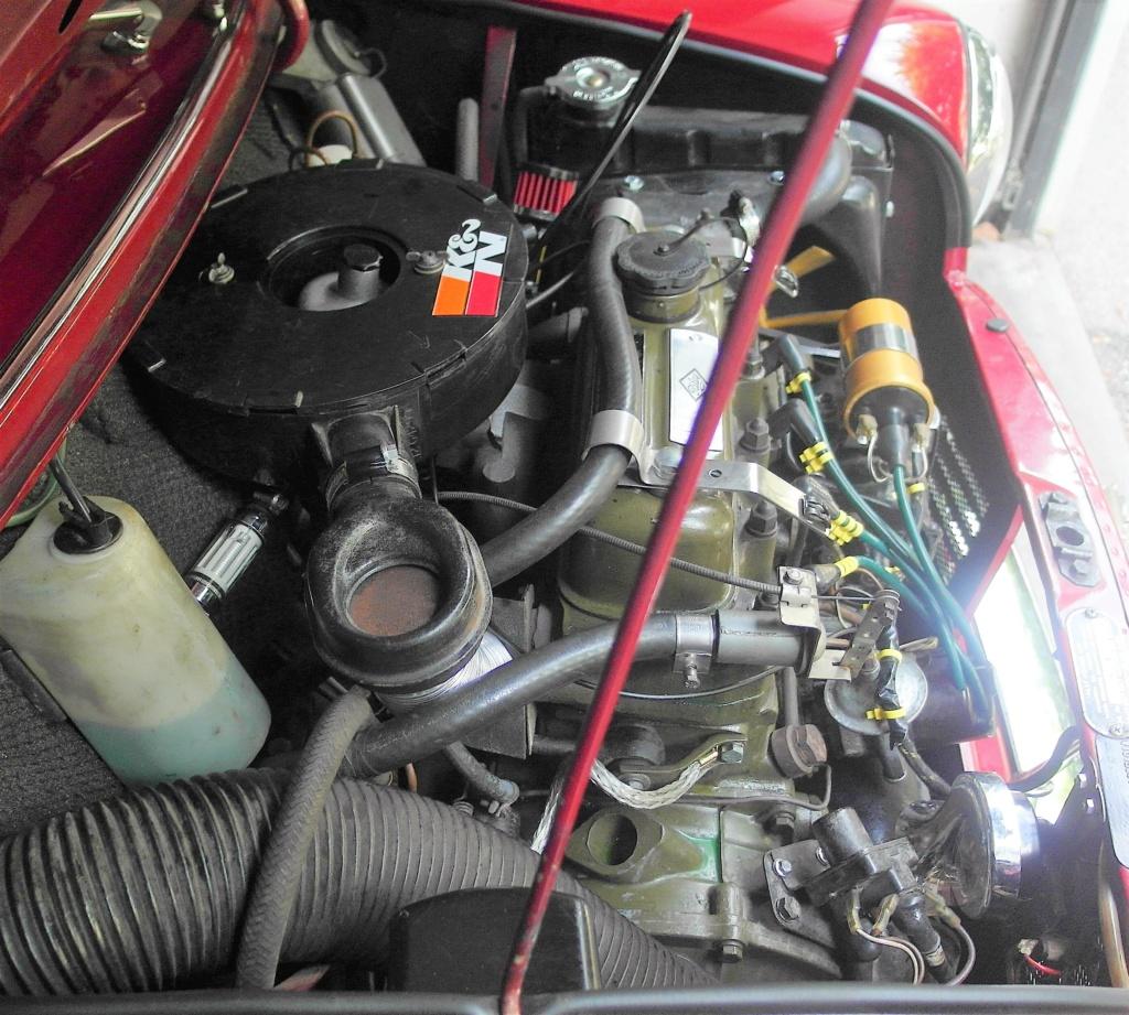 Rover Cooper 91 et Leyland 1100 77 et Riley Elf 67 - Page 9 Sam_3512
