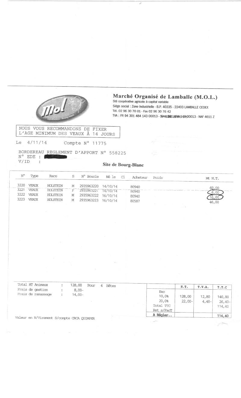prix des veaux holsteins  - Page 2 Veau_010