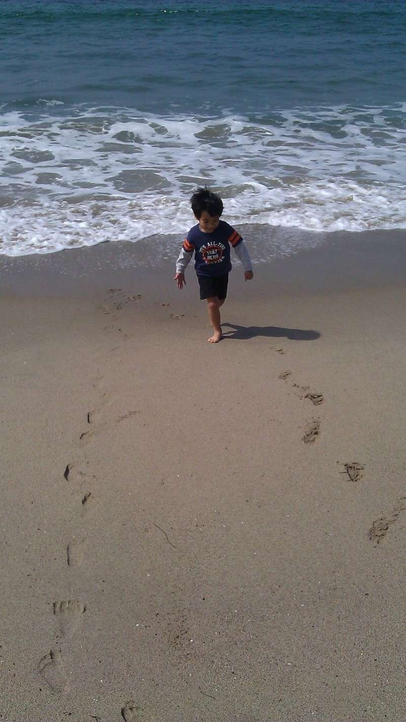 A day at the beach! Andrew11