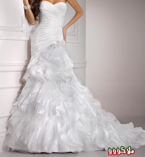 فساتين جديدة للعرائس  13458711