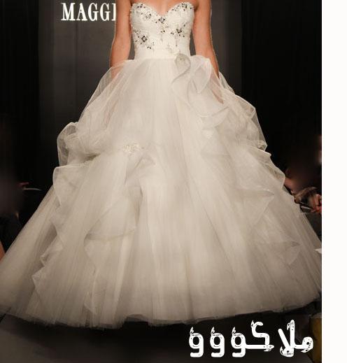 فساتين جديدة للعرائس  13458714