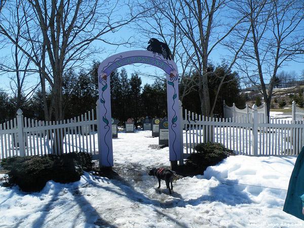 مقبرة مخصصة لدفن وصفات الآيس كريم 3f3d2810
