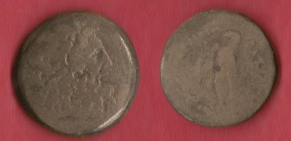 Identification Ptolem10