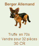 Les Chiens : Basset, Berger Allemand, Labrador, Chien Samouraï => Truffe Chien210
