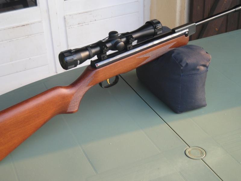 Les armes de Bosquetia (Màj 13/07/2011) Img_0015