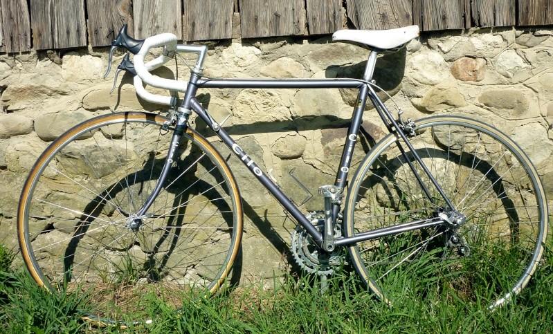 Cilo Reynolds 531 Profil15