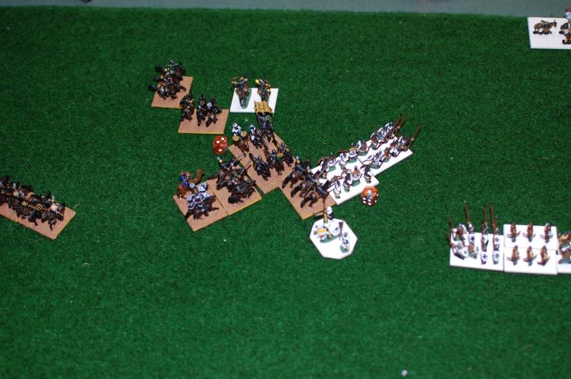 Art de la guerre V2: Teutons contre Mamelouks Dsc_2414