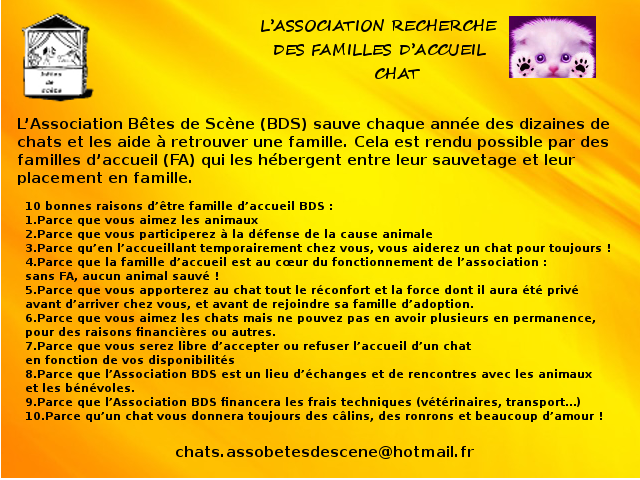 FA Chat - Page 15 Sans_t10