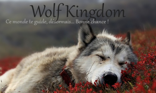 Wolf Kingdom Sans_t36