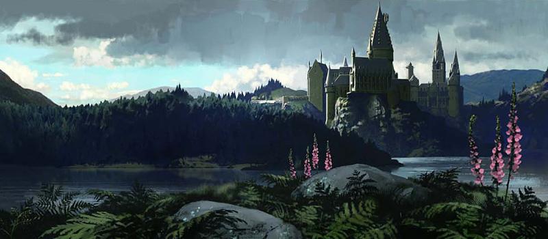 Projet: Décor Harry Potter pour Hall d'entrée Fb10