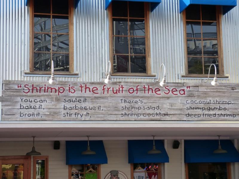 *VoyaGe De NoCeS Là où LeS RêVeS DeVieNNeNT RéaLiTé * Universal ~ Sea World ~ Discovery Cove ~ WALT DISNEY WORLD * (Mise à jour Island of Adventure [FIN] le 07.04.14 ~ SOMMAIRE P1)  - Page 2 P1000116
