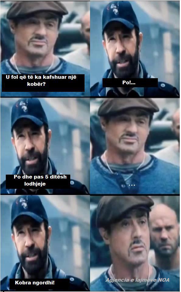 Chuck Norris Yjfu10