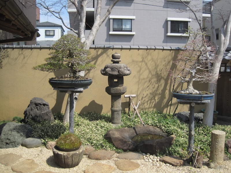 Bonsai Trip To Japan, April 2012 - Page 2 Img_0318