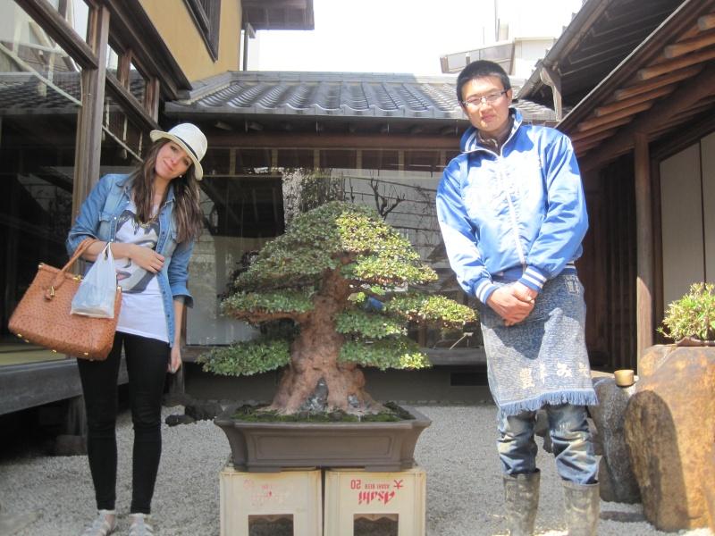 Bonsai Trip To Japan, April 2012 - Page 2 Img_0325