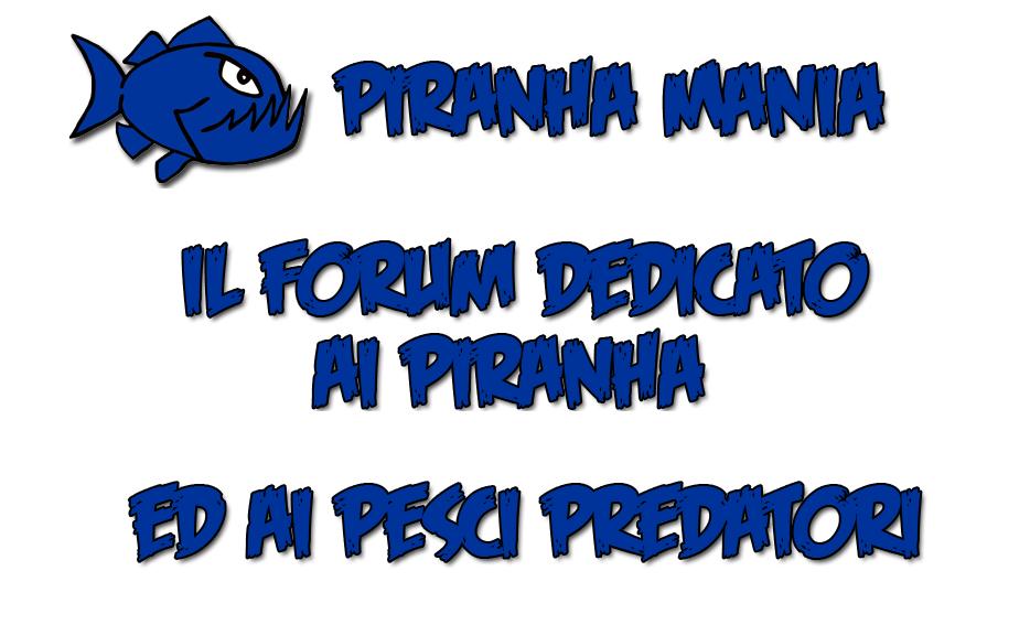 PIRANHA MANIA Captur13