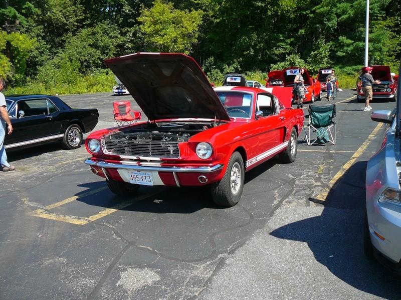 Mustang show pics P1050517