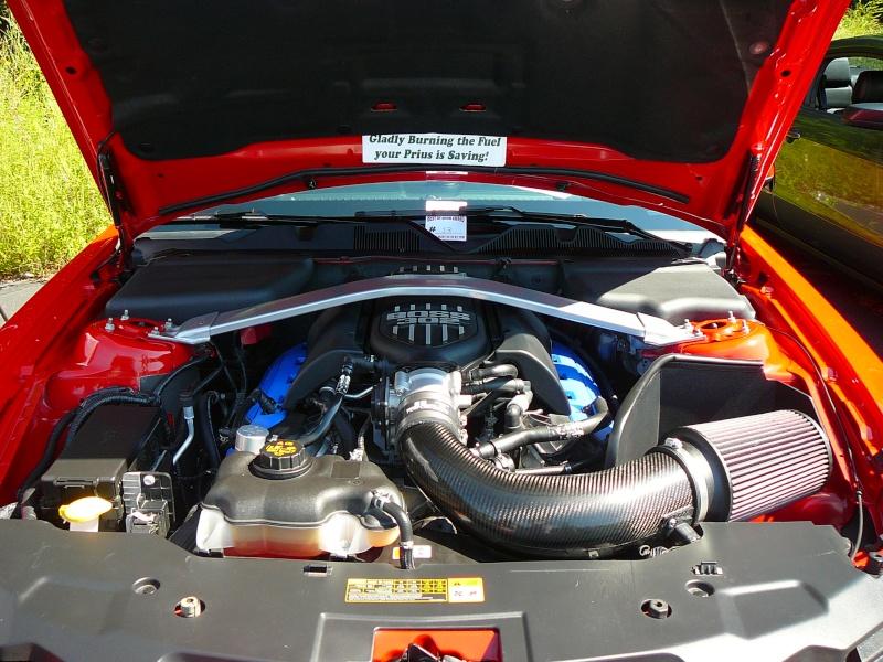 Mustang show pics P1050520