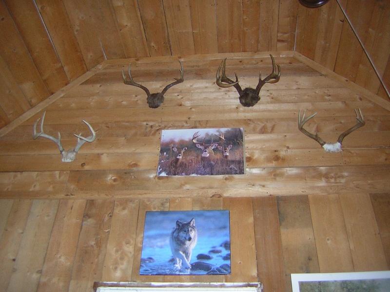 Racontez nous vos histoires de chasse au chevreuil ! - Page 3 Dscn3111