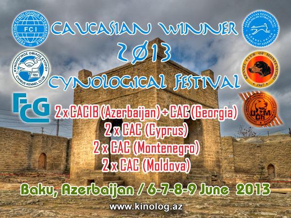 CAUCASIAN WINNER-2013 0bf5f010